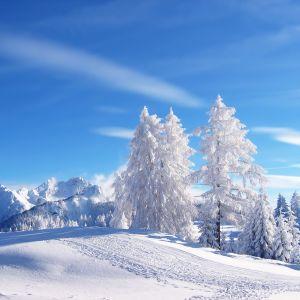 Winter 2013 Electro Mix