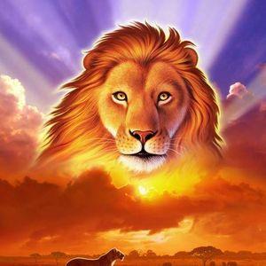 de leeuwenkuil maandag 23 februari 2015 met dank edwin simonis