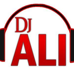 DJ Ali - Electronicus Magnificus