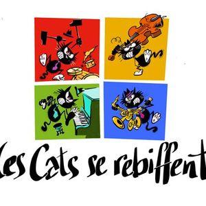 LES CATS SE REBIFFENT 19 10 20