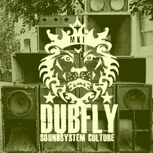 Dubfly: Two