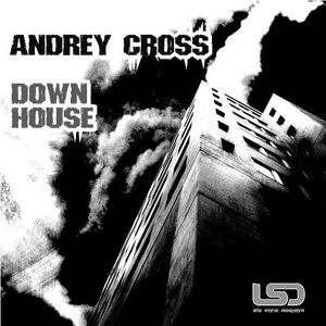 Andrey Cross - down house (2009)