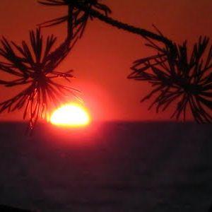 Chiringuito(Evening)