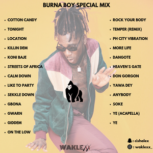 BURNA BOY SPECIAL MIX