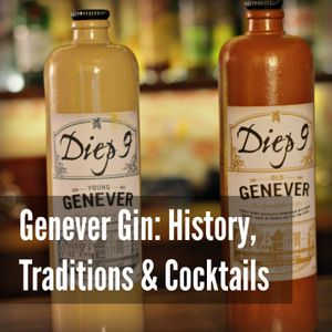 22 - Genever Gin - History, Traditions & Cocktails