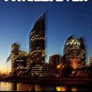 Junglefever - Summer in Babylon