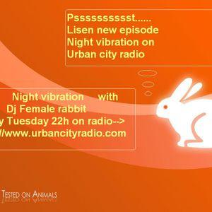 Dj female rabbit-Night vibrations #06 for Urban city radio