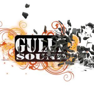 Gullysound - Conscious Reggea Mix