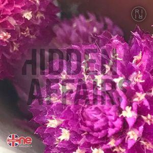 ++ HIDDEN AFFAIRS   mixtape 1652 ++