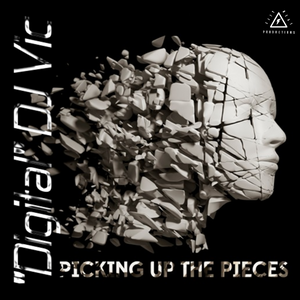 Picking Up The Pieces  (Digital Compact Disc)