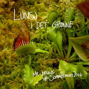 Lunsj i det grønne –Mr Jorgens #Sommermiks2016