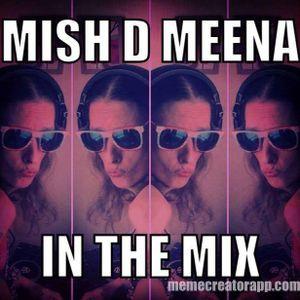 Mish D Meena  - 31/03/2017