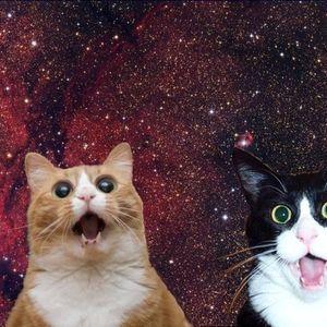Cateor - Deep'n'Meow #003
