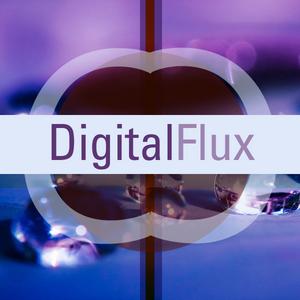 DigitalFlux Electronic Podcast Volume 2