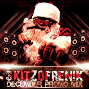 Skitzofrenik - December Promo Mix