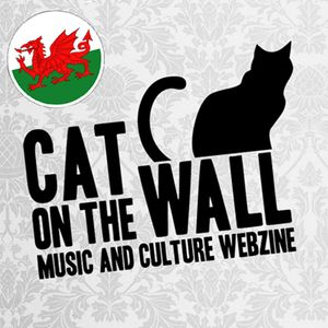 Cat On The Wall Cwtchy Mix
