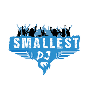 DJ Smallest - Electro-House, Dance mix 18