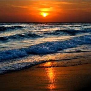 TFfB -  BEACH LOUNGE COSTA DAURADA   # 171 - 126 - 25.10.2015 / 07.30 AM
