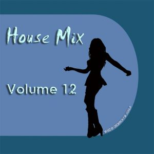 DFMC House Mix Volume 12