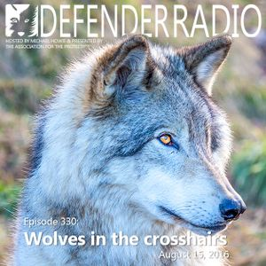 Episode 330: Wolves in the crosshairs