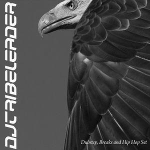 Dj Tribeleader - [Dubstep, Breaks and Hip Hop Set]