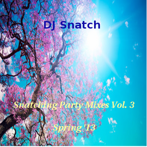 Snatching Party Mixes - Vol. 3 (Spring 13')