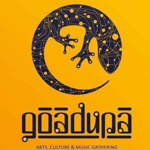 Abyss - Goadupa Arts, Culture & Music Festival 2015