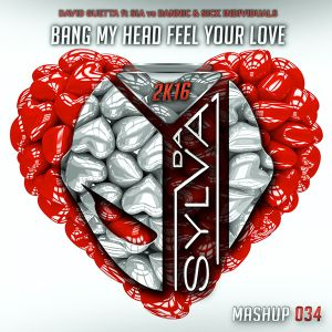 David Guetta ft Sia Vs Dannic & Sick Individuals - Bang My Head Feel Your Love (Da Sylva Mashup)