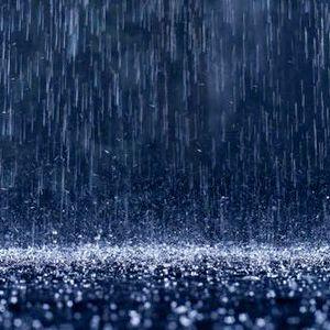 Vocal Rain
