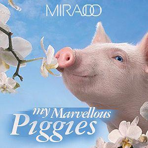 Dj Mira Joo - My Marvellous Piggies