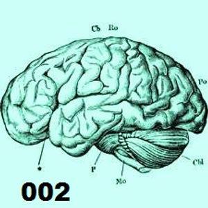PAWELDUN - Brained techno set 002 [vinyl set]