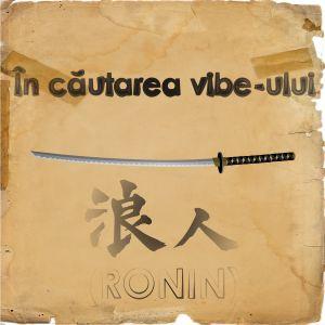 In cautarea vibe-ului 001 Live @ Drums.ro Radio