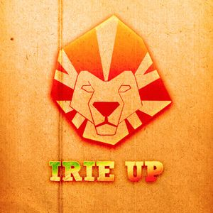 IRIE UP Meets RUB-A-DUB TING! Outta my Yard & Dubforceradio Connection - 24/01/2016