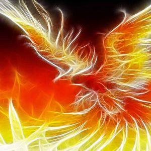 Phoenix Radio Episode 7 19/03