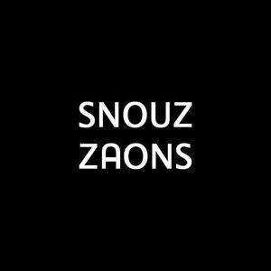 ZAONS