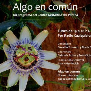 Segundo programa Algoencomun