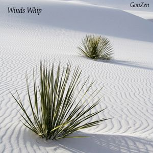 Winds Whip