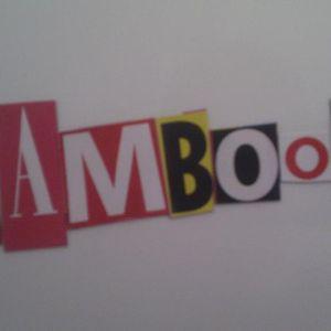 Hamboom Sonar FM