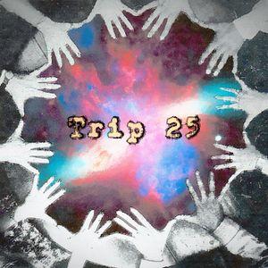 Funk Machine: Trip #25 (Hands Up)