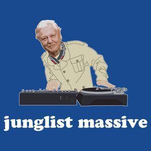 Junglist mixin' adventures 2 (Vinyl mix)