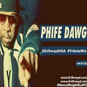 #PhifeDawg  #TributeMix  #ATCQ