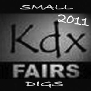 Small 2011 KDX digs