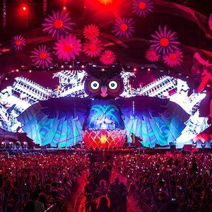 Festival Set
