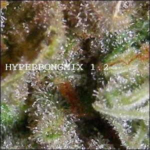 HYPERBONGMIX 1.2