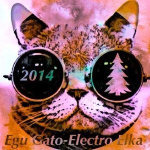 Egu Gato - Electro Elka! (Set 30.12.2013)