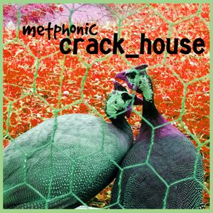 Crack_House