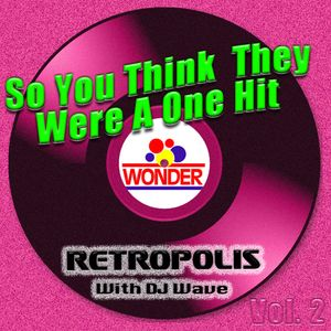 So You Think They Were A One Hit Wonder II!