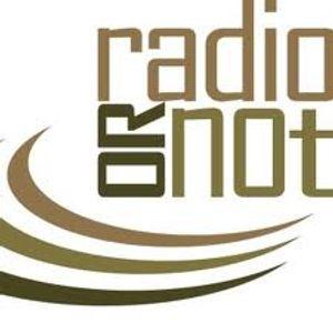 Radio or Not- Nicole Sandler Show - Ralphie May