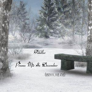 Fiddler - Promo Mix In December (2011.12.02)