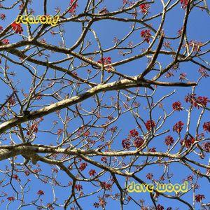 Transmission#09 - Seasons